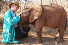Paul O'Grady: For The Love Of Animals – India